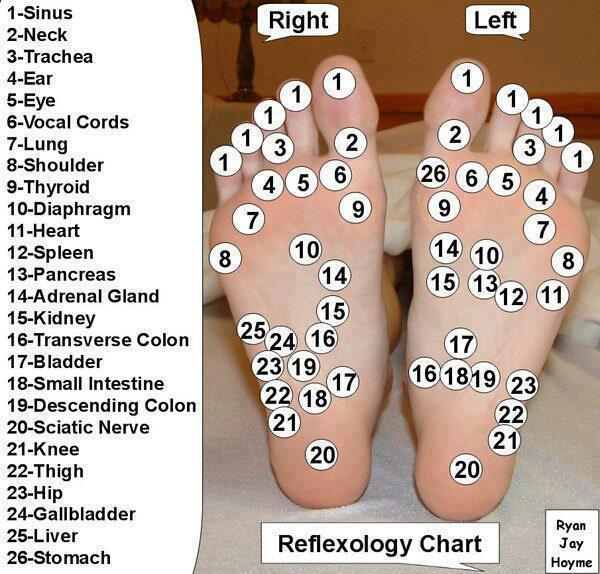 Акупрессура: точки акупунктуры на ступнях